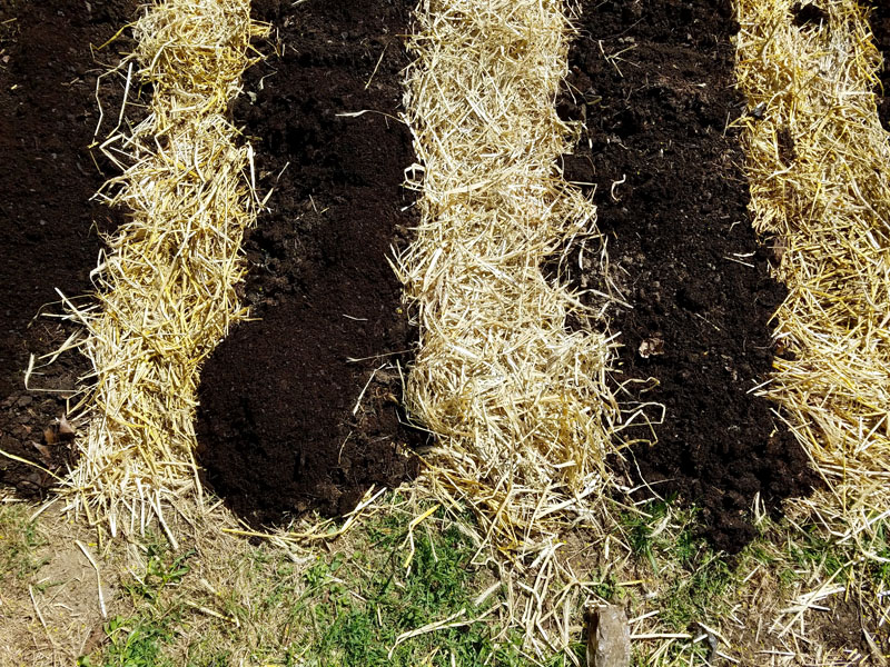Straw and mulch compost